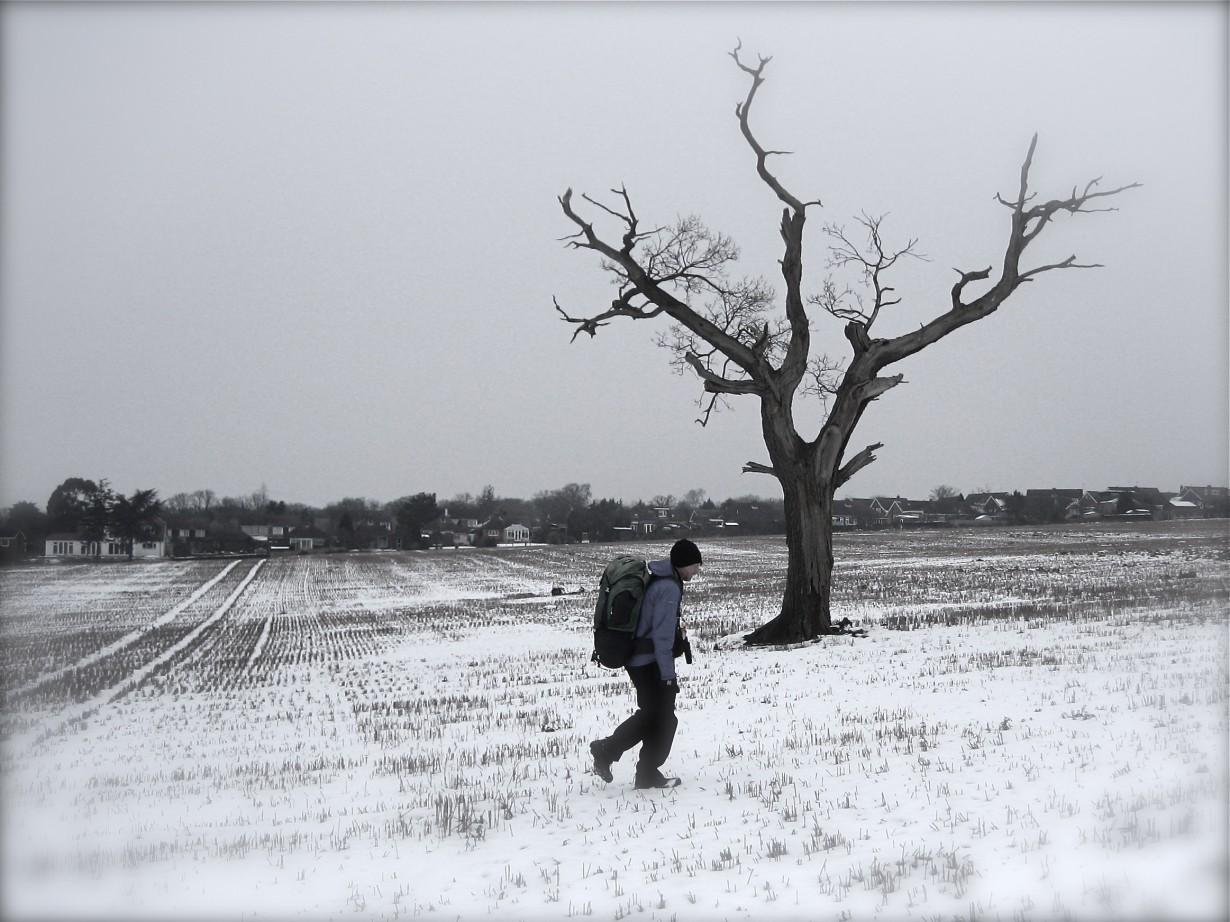 winter walking snow tree m25 microadventure