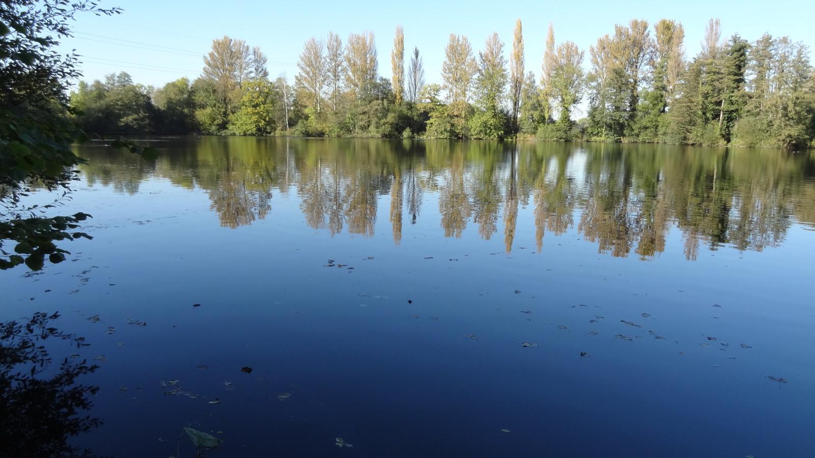 Carp_Lake_from_Denham_Lock_Wood