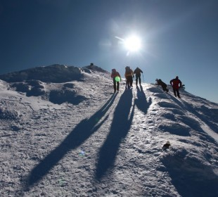 Why Everyone Should Climb a Mountain