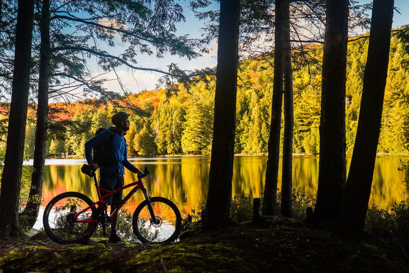 forest bike