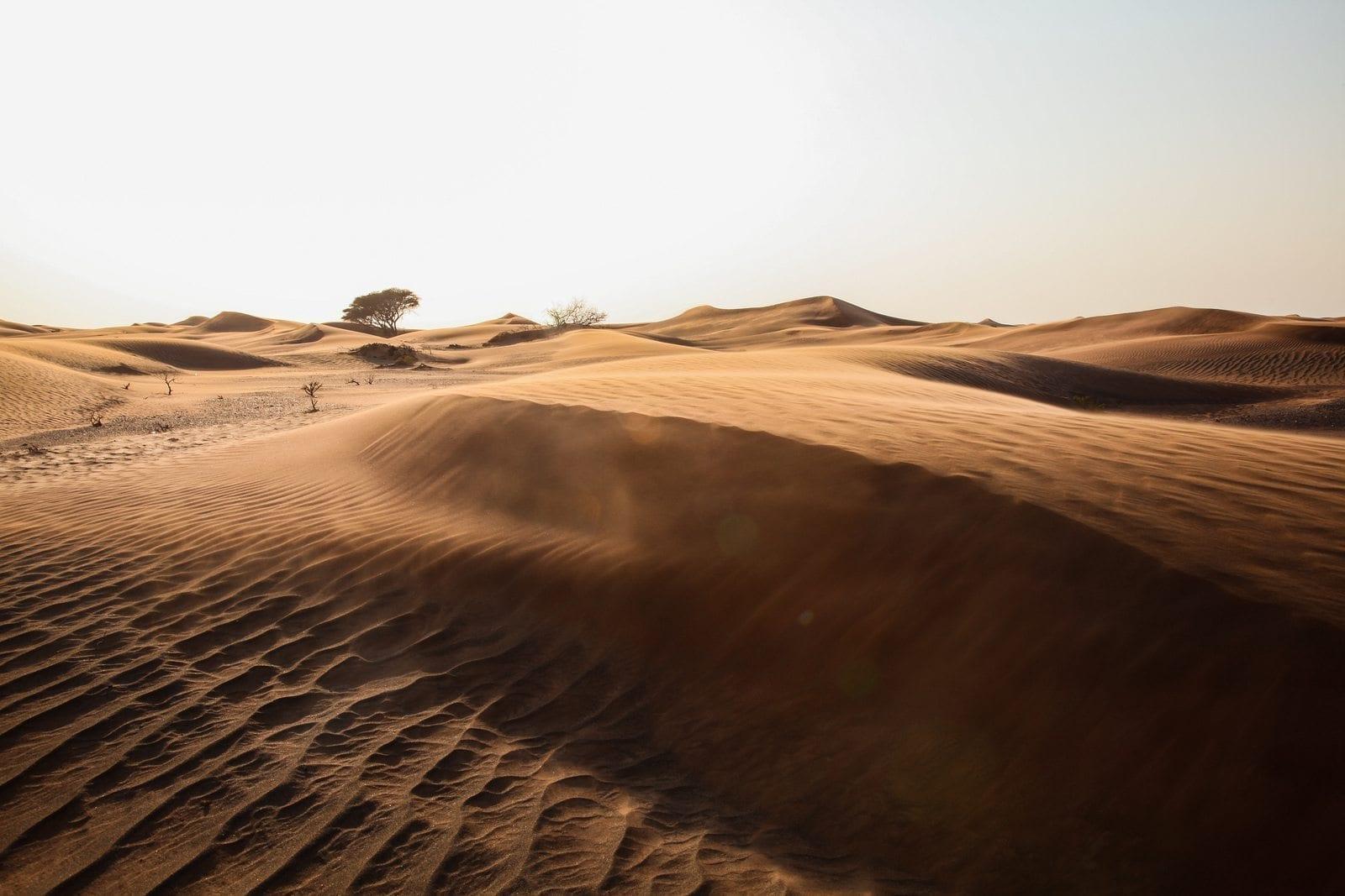 empty quarter desert dunes