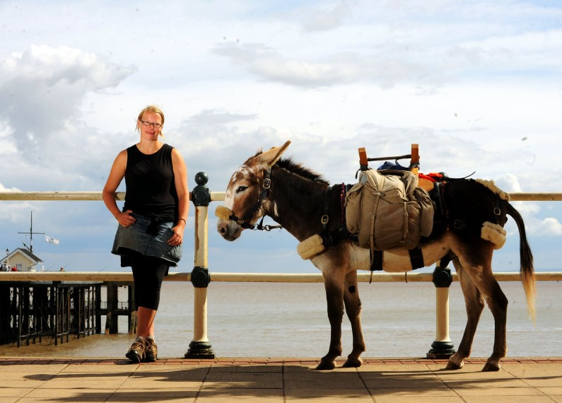 A Walk Round Wales with a Seaside Donkey