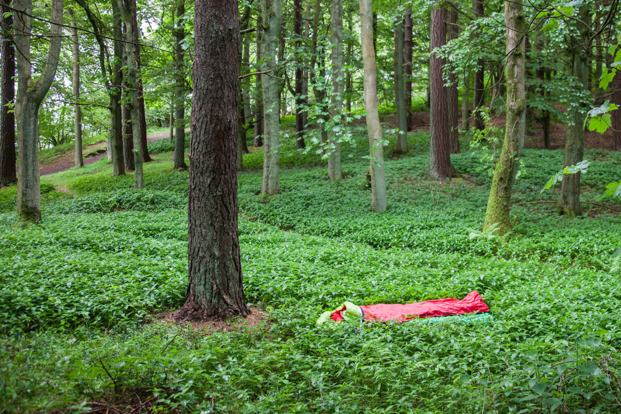 forest bivvy